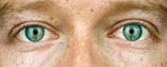 Zuckerbergs Augen aus der Nähe