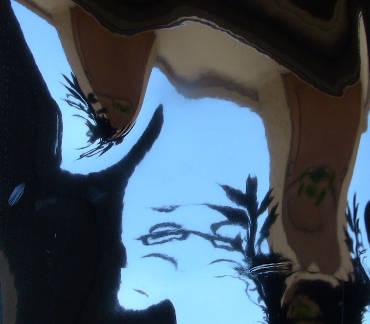 Eine verzerrte Fotografie von einer Balkonbrüstung.