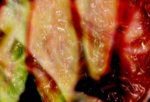 Grüne und rote Paprikaschoten.