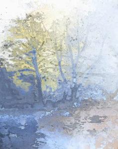 Eine idyllische Wiese neben einem Teich mit Laubbäumen.