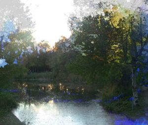 Ein Teich mit stehendem Wasser.